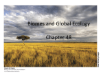 Species Interactions, Communities, and Ecosystems