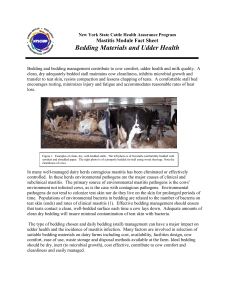 Bedding Materials and Udder Health