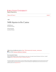 Stifle Injuries in the Canine - Iowa State University Digital Repository
