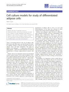 Cell culture models for study of differentiated adipose cells