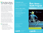 Work, Stress and Health Program