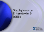 Staphylococcus enterotoxin B - The Center for Food Security and