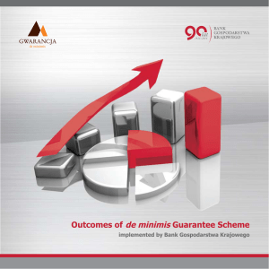 Outcomes of de minimis Guarantee Scheme